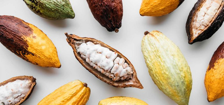 RDW-Header-cocoa-pods-1