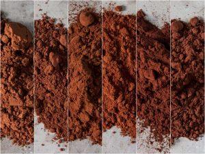 dutch-cocoa-powder-all-1