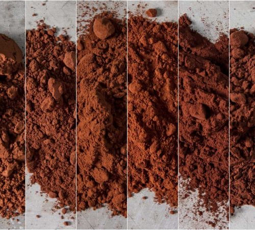 dutch-cocoa-powder-all-1